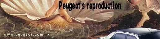 Enlargement of Peugeot Botticelli ad.