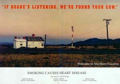 Click for a larger, floating, image. Marlboro ad: If Duane's listening. We've found your cow.